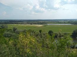 Zdjęcie panoramy- trawa i niebo