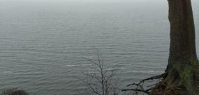Die landseitige Ansicht der Ostsee. Foto: Dr. Wojciech Zbaraszewski