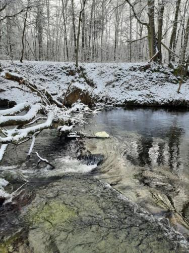 zima, rzeka, konar drzewa w rzece, autor zdjęcia: Joanna Osińska
